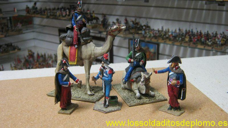French in Egypt ,1798 ,Camel Corps by Rose Miniatures and New Hope